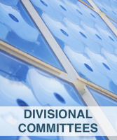 Divisional Committees